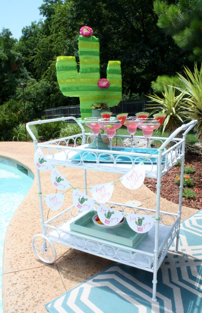 Cactus Birthday Pool Party